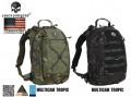 EMERSON Assault Backpack/ Removable Operator Pack (Multicam Black/ Multicam Tropic)